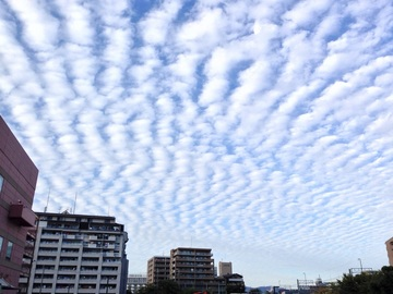 281010_sky.jpg